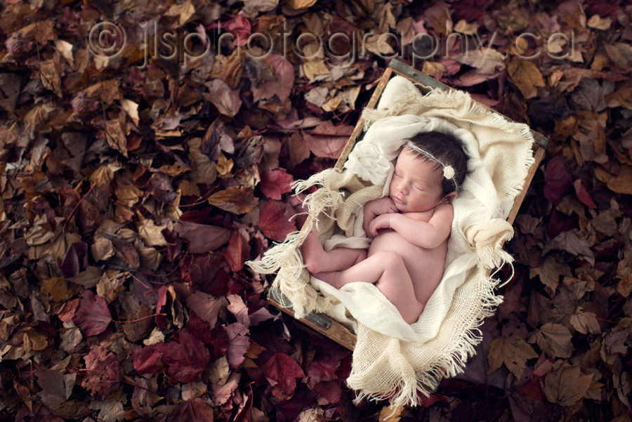 Newborn in the fall leaves baby in fall leaves newborn on a stump