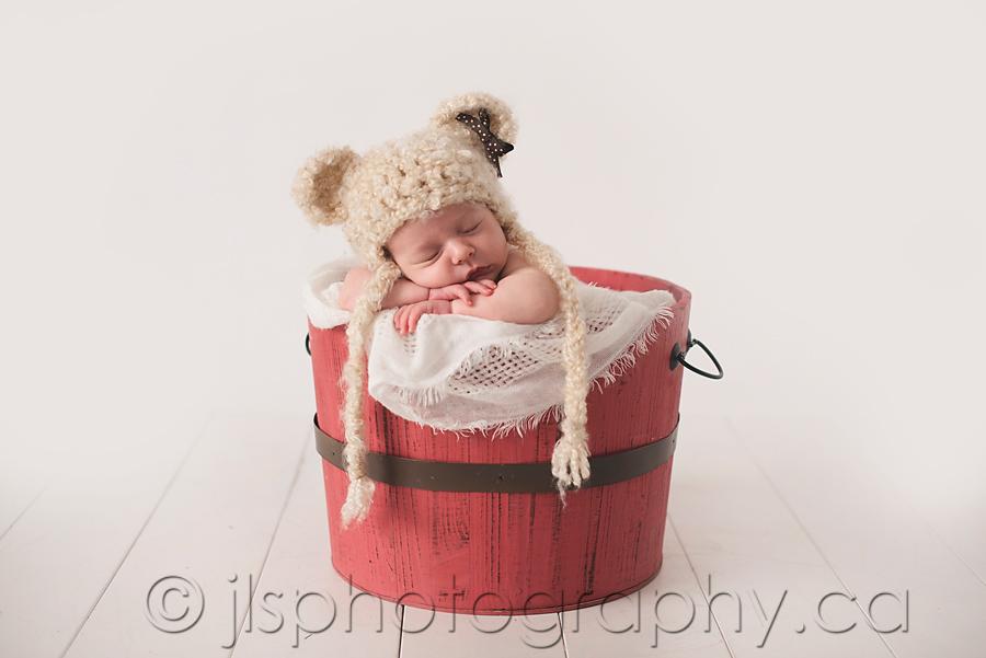 newborn teddy bear ears