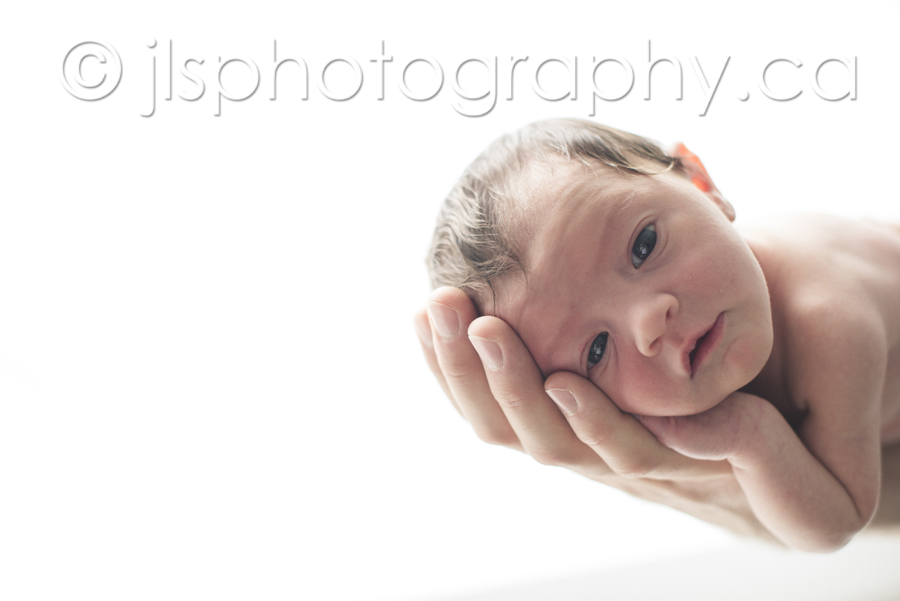 Newborn baby in daddy's hand, Newborn on arm,