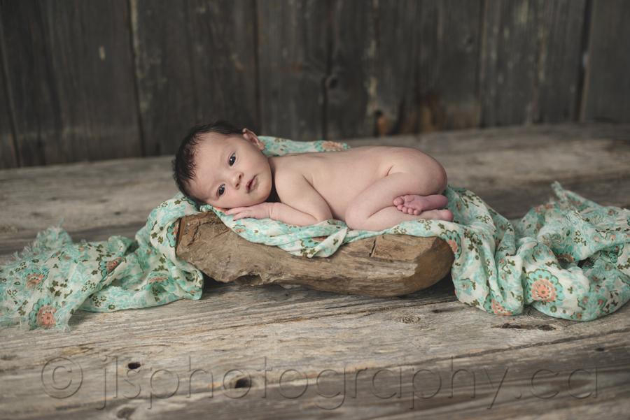Newborn in a stump, Newborn in a wood bowl, Barn wood backdrop