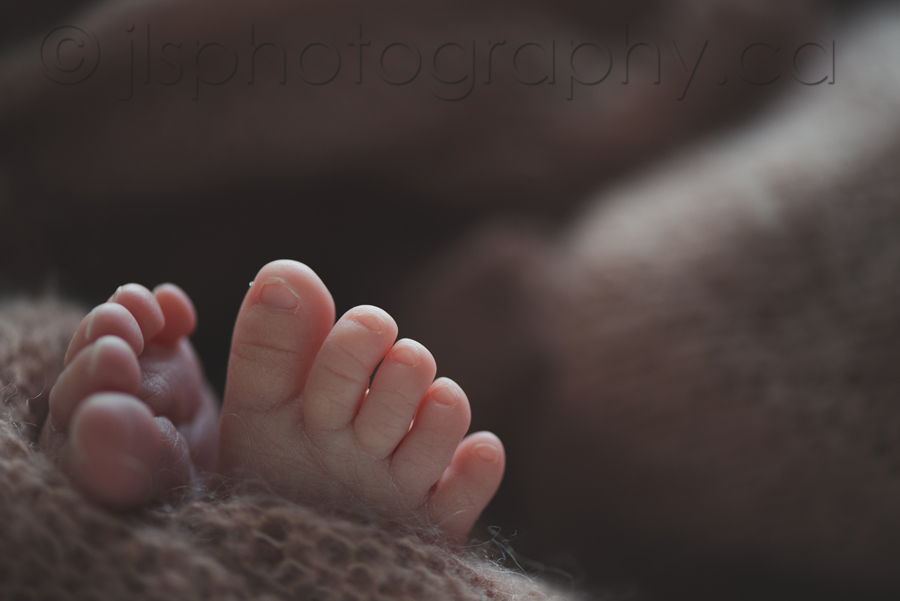 Newborn Macro Photography, Newborn toes, Teeny Tiny toes, Baby Toes, Backlighting,